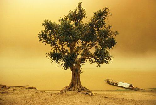 Tempête de sable sur le Fleuve Niger, Mali 2001