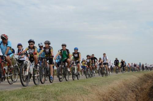 Arles info sur les chemins de camargue bicyclette - Office du tourisme salin de giraud ...