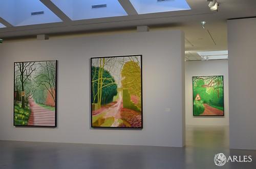 exposition David Hockney fondation Van Gogh