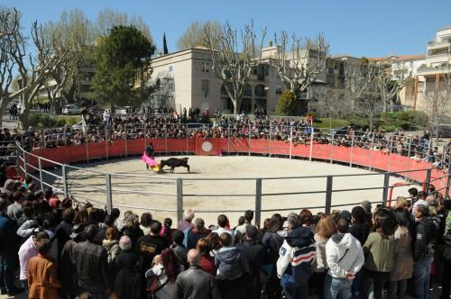 Demonstration Voltige  Capeas et Recortadores pm *** Local Caption *** Demonstration Voltige  Capeas et Recortadores
