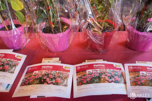 Remise des prix du concours Arles en Fleurs