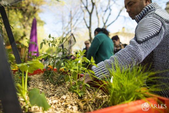 Le 14 avril 2019, la Foire aux plantes et à la biodiversité, organisé par la Ville, déploie stands et ateliers pour voir la vie en vert. photo F. Gardin/ville d'Arles.