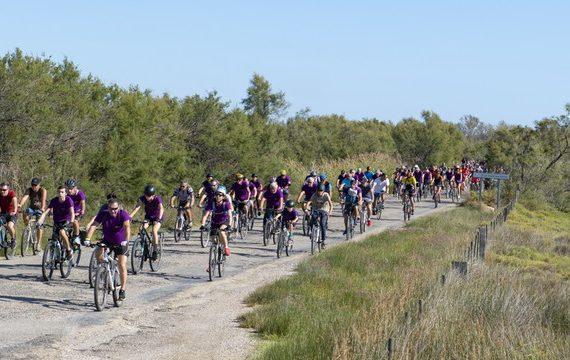 600 cyclistes ont emprunté les chemins et la route reliant Salin-de-Giraud à Arles, à l'occasion du traditionnel Relais du Sel, samedi 28 septembre. Cette randonnée à vélo de 42 kilomètres à travers la Camargue, existe aussi en version longue, soit 80 kilomètres avec un départ au Pont Van Gogh pour une trentaine de personnes, cette année. A l'arrivée, les participants - dont de nombreux enfants - se retrouvent sur la place de la République où a lieu la distribution de sachets de sel, le symbole de Salin-de-Giraud. Photo P. Praliaud - ville d'Arles